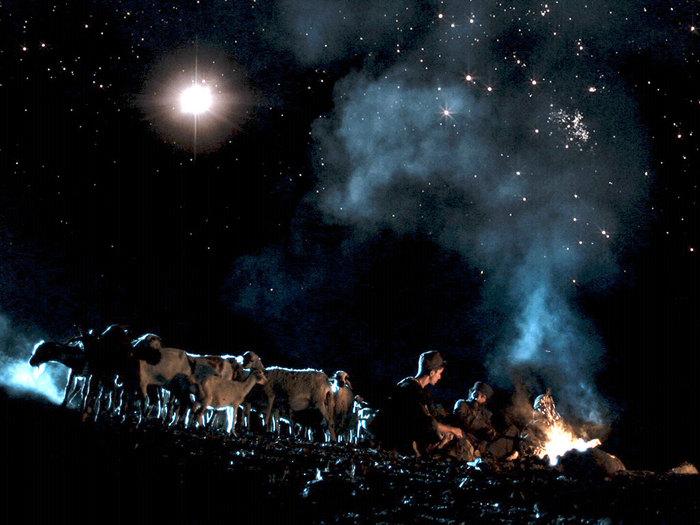 001-shepherds-angels